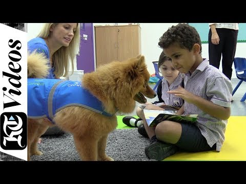 For the first time in a Dubai school, dogs are helping students read