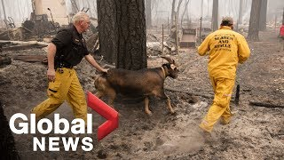 Emergency officials provide an update on firefighting efforts in California