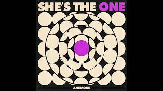 Play She's the One
