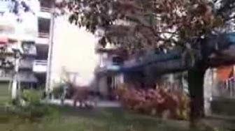 Enschede - Redempforistenpark Seniorenheim in Holland am Sonntag den 14.10.2012