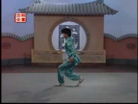 Wushu 武术  Ying Zhao Quan 鷹爪派  Training Program Part 3