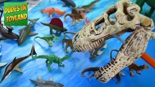 Dinosaur toys by Safari Ltd. - Prehistoric Sharks Toob, Carnivorous Dino Toobs, T-rex Skull Snapper