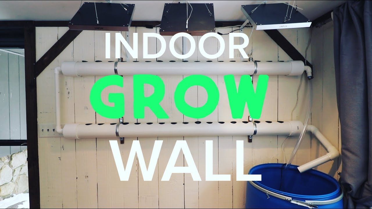 Build A Hydroponic Grow Wall Inside Grow Plants Year Round And Save Money Youtube