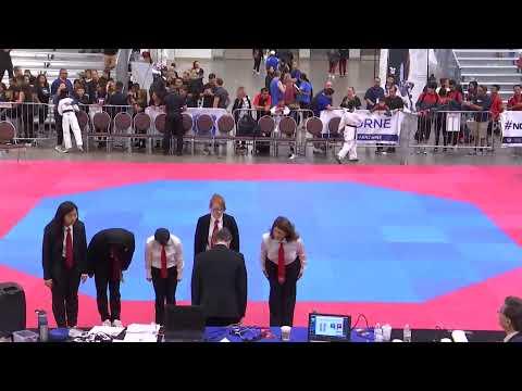 USA Taekwondo | 2019 National Championships | Main Ring | Day 1
