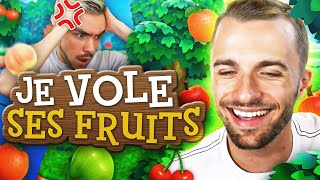JE LUI VOLE TOUS SES FRUITS ! 😈 (Animal Crossing ft. Shytoos)