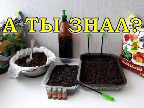Как прокалить землю для рассады в домашних условиях