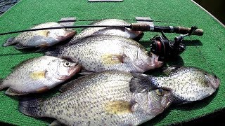 SLAB CRAPPIE!!! Fall Crappie Fishing 2018
