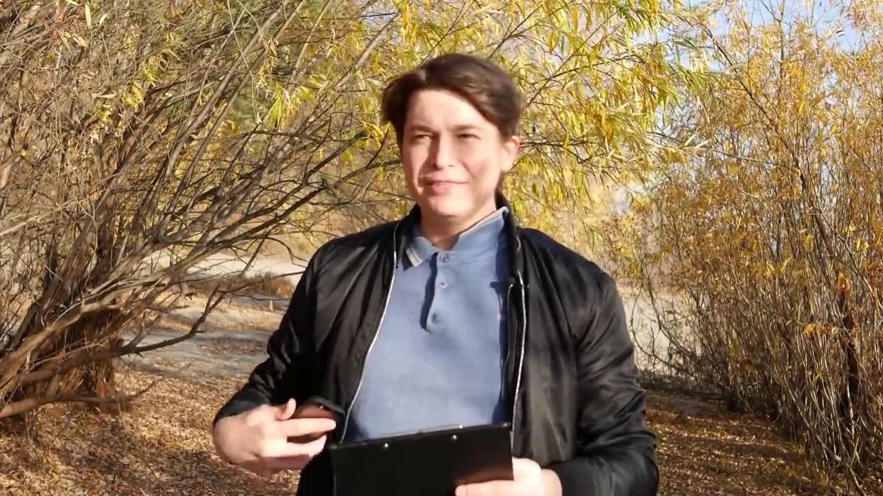 Ксения Собчак легла под нож пластических хирургов