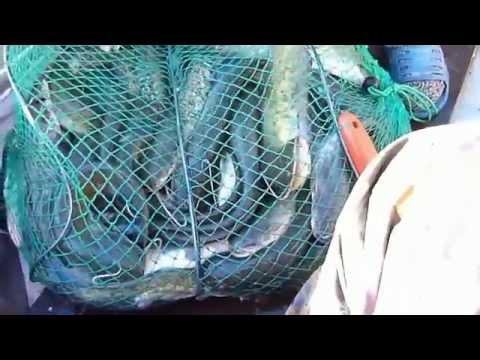 Рыбалка в Астрахани - потрясающий отдых для тебя!