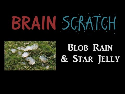 BrainScratch: Blob Rain & Star Jelly