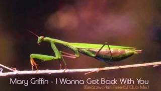 Mary Griffin - I Wanna Get Back With You (Beatzworkin Freefall Club Mix)