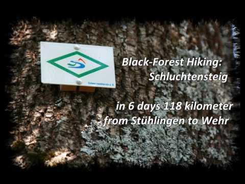 Black Forest Hiking: Schluchtensteig Schwarzwald 2009