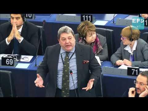 Brexit MEP David Coburn raises concern over use of European Gendarmerie Force in Paris