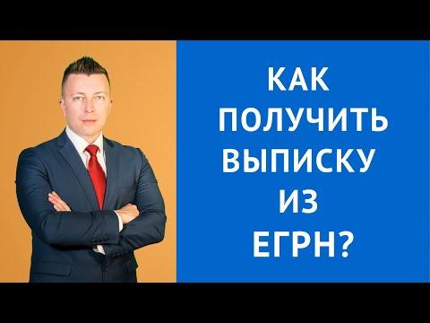 Как получить выписку из ЕГРН - адвокат Москва