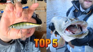Top 5 Baits For Catching Big Pike