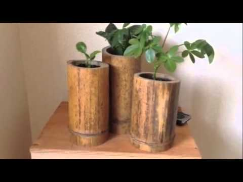 D I Y Easy Bamboo Planter Ideas You