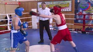В Махачкале прошел открытый турнир по боксу на призы Тимура Гайдалова