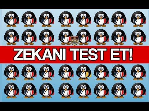 10 SANİYEDE FARKI BULURSAN DAHİSİN! - DİKKAT TESTİ
