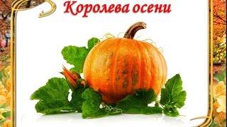 ЗОЛОТЫЕ РЕЦЕПТЫ из тыквы. Рецепты полезных блюд из тыквы для здоровья и красоты