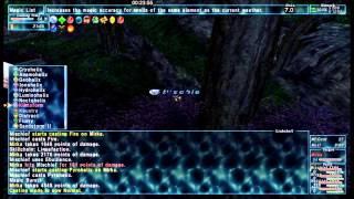 FFXI - SCH Kamihr Delve Solo (1-5 + Utkux)