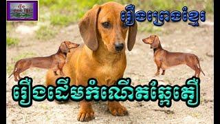 រឿងព្រេងខ្មែរ-រឿងដើមកំណើតឆ្កែតឿ Khmer Legend-The origin of short dogs