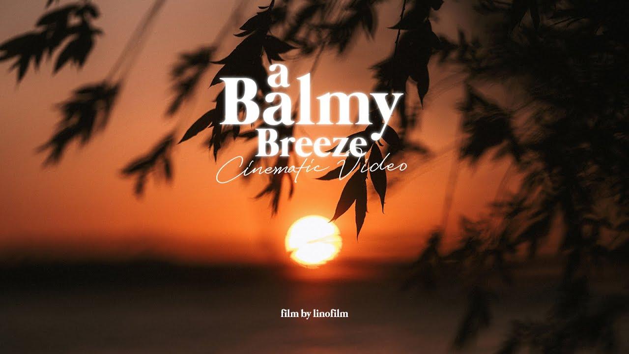 [리노일기, #24] a Balmy Breeze, 산들바람 불어오는 봄날 시네마틱 브이로그 / 후지필름 GFX-100S (FUJIFILM GFX-100S)