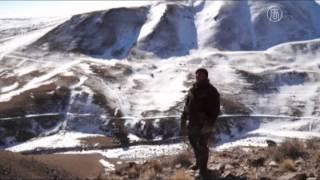 大犛牛要怎麼趕? 直擊吉爾吉斯高原放牧|大千世界|犛牛|犁牛|吉爾吉斯斯坦 KYRGYZSTAN|yak|牧人 herder