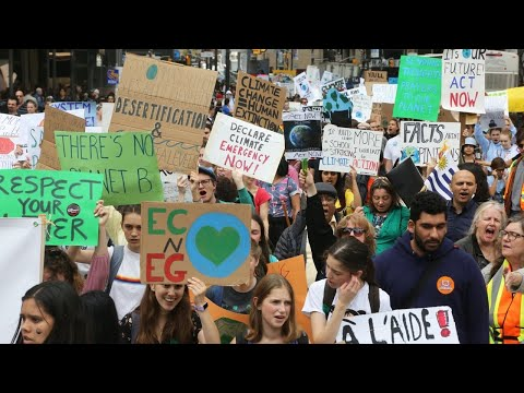 Climate strike organisation disbands because it was 'a racist, white dominated space'