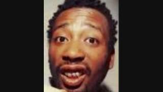 Wu Tang Clan Ol' Dirty Bastard Brooklyn Zoo