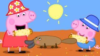 Peppa Pig Français 🌽 Peppa Et Georges Partent En Australie 🐨 Dessin Animé