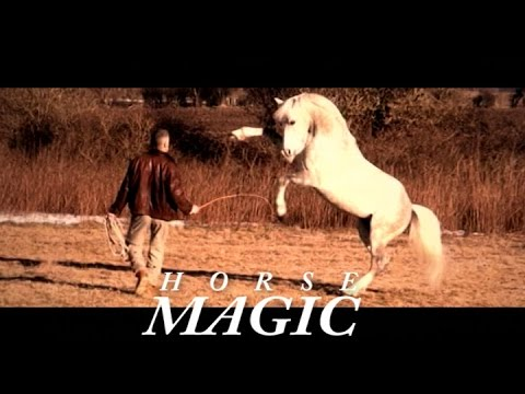 Hempfling - Horse Magic in Unfenced Wilderness - Two Steps From Hell - Victory