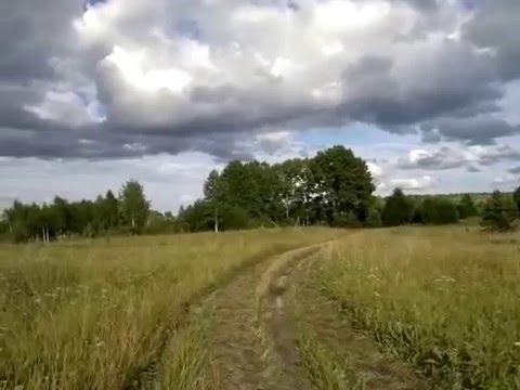 Поле в Архангельской области, Устьянский район