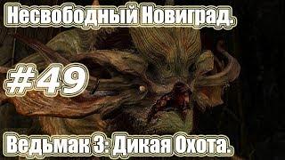 Ведьмак 3: Дикая Охота. Видео прохождение игры. #49 -Несвободный Новиград.