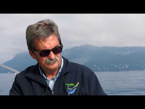 Pescare a Bolentino a San Felice Circeo - Colmic