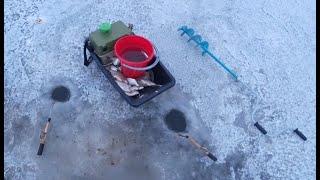 Зимняя рыбалка Ловля ЖИВЦА Ловля белой рыбы густера тарашка Рыбалка со льда