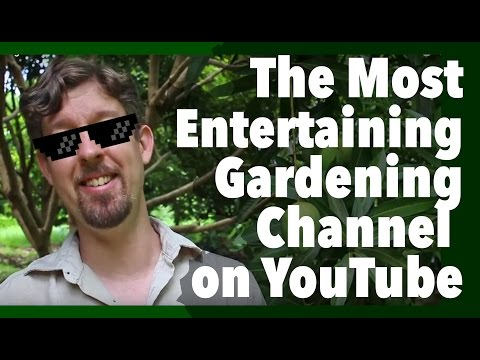 Love Gardening? Subscribe to David The Good!