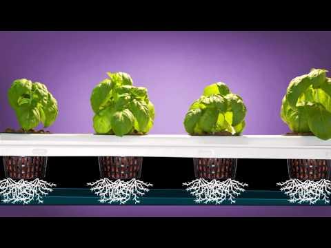 Aeroponics, how to Super Flow non-clogging aeroponics System!