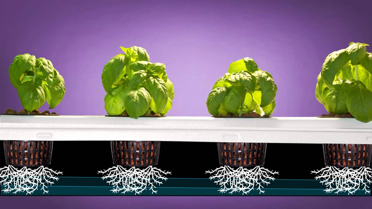 Aeroponics How To Super Flow Non Clogging Aeroponics