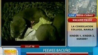 Gambar cover UB: Iba't ibang uri ng ibon at iba pang hayop, nasabat sa DENR checkpoint sa Tayabas, Quezon