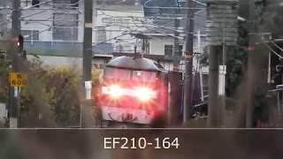 JR山陽本線 貨物列車 EF210ー164