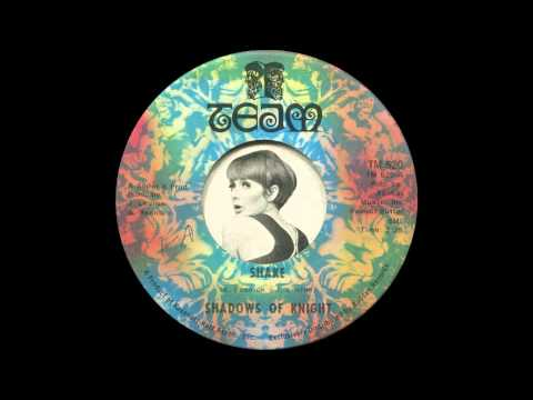 Shadows of Knight - Shake (1968)