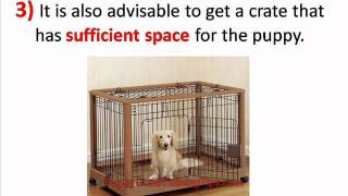 Easy Steps To Puppy Crate Training