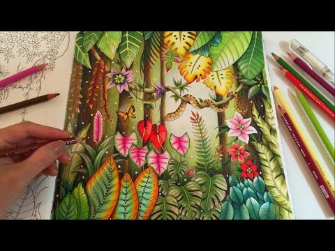 MAGICAL JUNGLE | Adult Coloring Book by Johanna Basford | Coloring With Colored Pencils