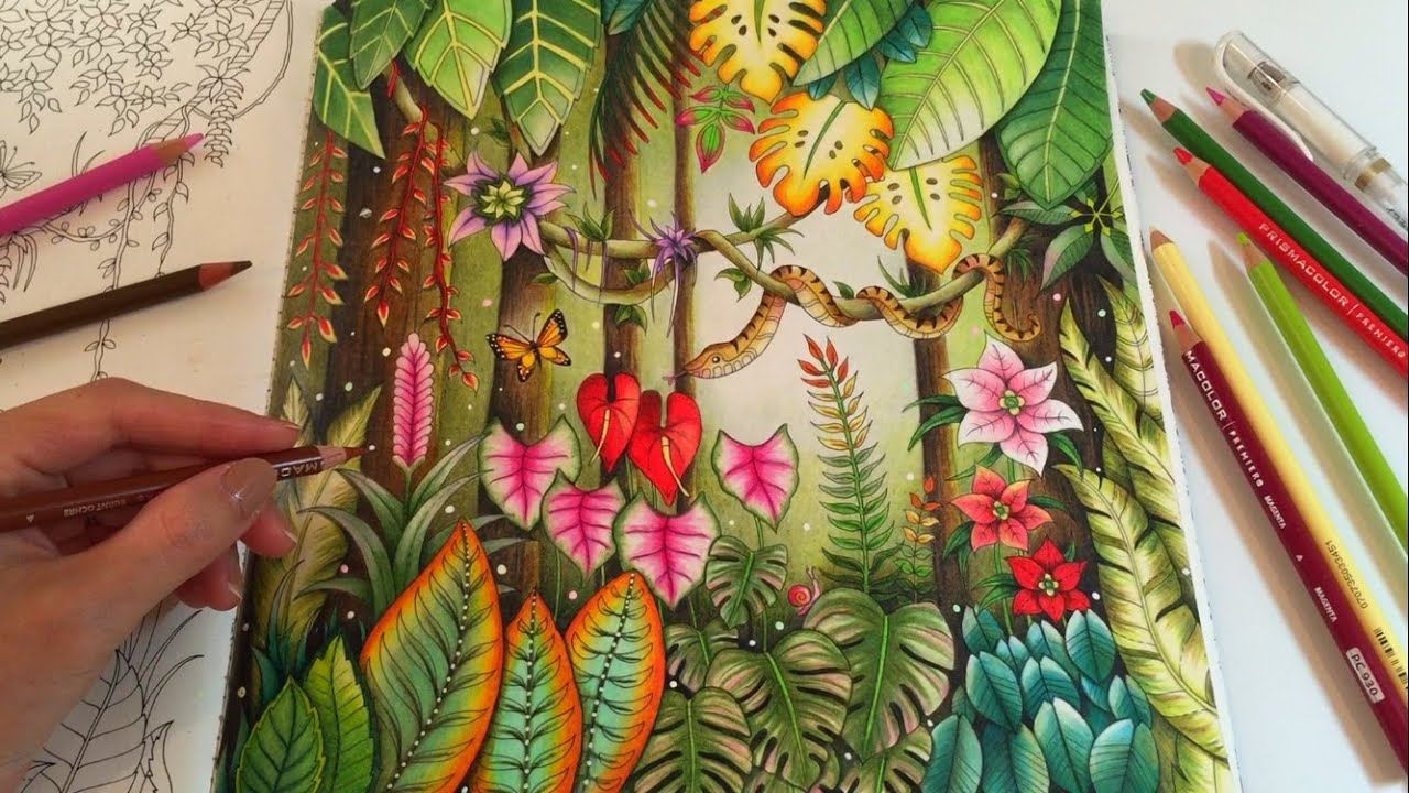 MAGICAL JUNGLE Adult Coloring Book by Johanna Basford Coloring