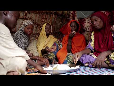 Cradled By Conflict: Nigeria Case Study