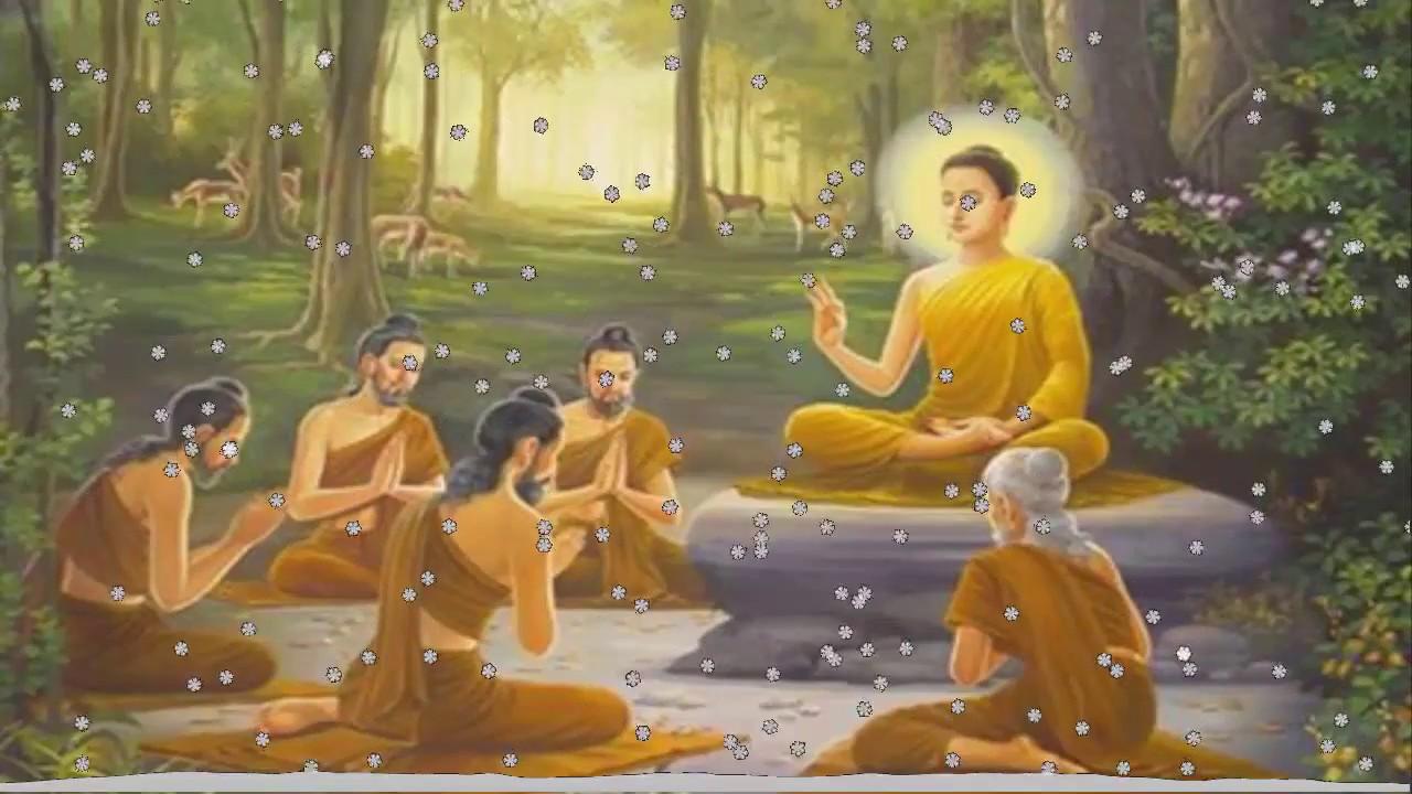 Đêm Trằn Trọc khó ngủ Hãy để Phật Kể Chuyện về Cuộc Sống để cho tâm yên Giấc dễ ngủ