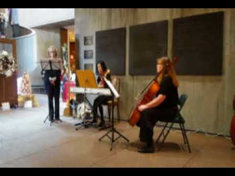 Piano solo at the Everson Museum Festival of Trees