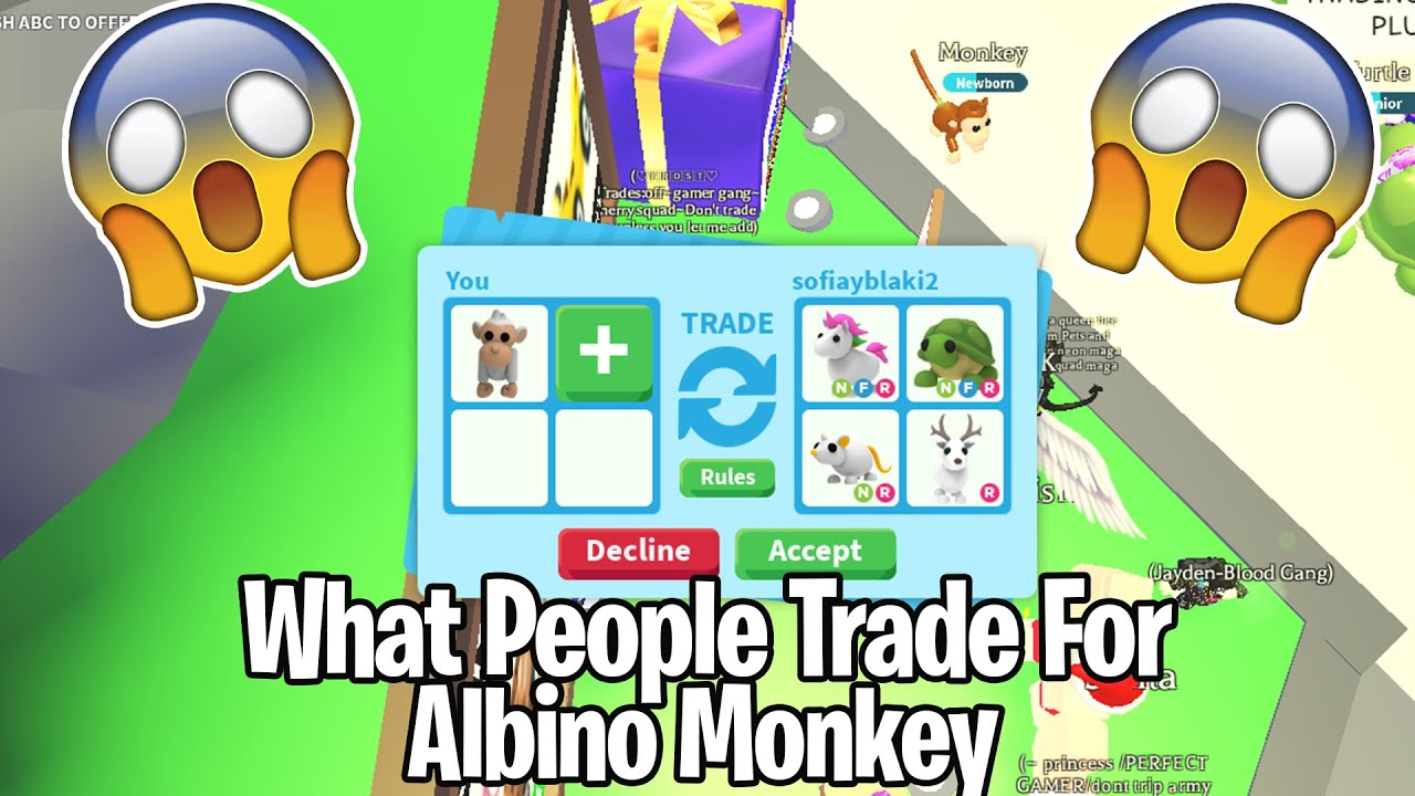 What People Trade For Albino Monkey Roblox Adopt Me Youtube