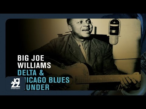 Big Joe Williams - Peach Orchard Mama