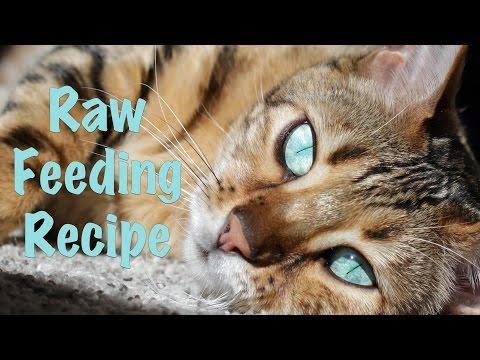 Our Raw Feeding Recipe